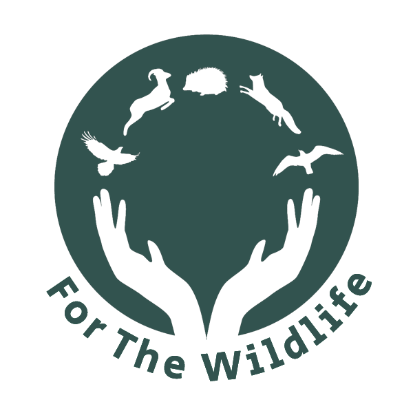 For the wild logo