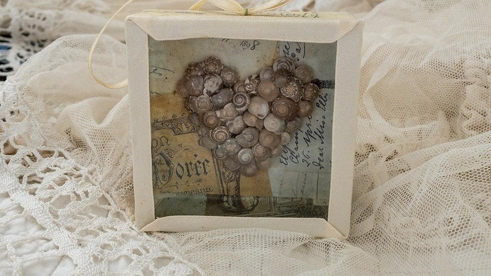 Vintage French Seashell Shadow Box