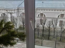 Вид из окна на Манеж