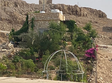 Small stone house with lush garden amidst desert surroundings in Jordan.