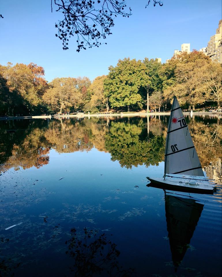 Central Park: Autumn