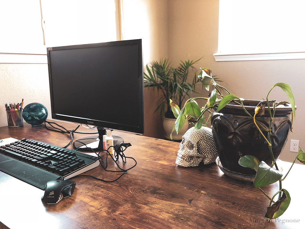 office with wood desk, computer, plant, and decor