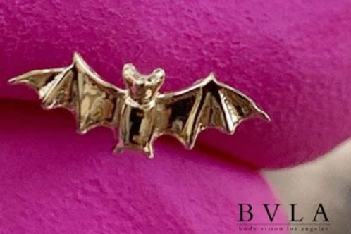 Topo Bat - BVLA