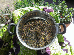 MAMA THYME Healing Herbal Sitz Bath