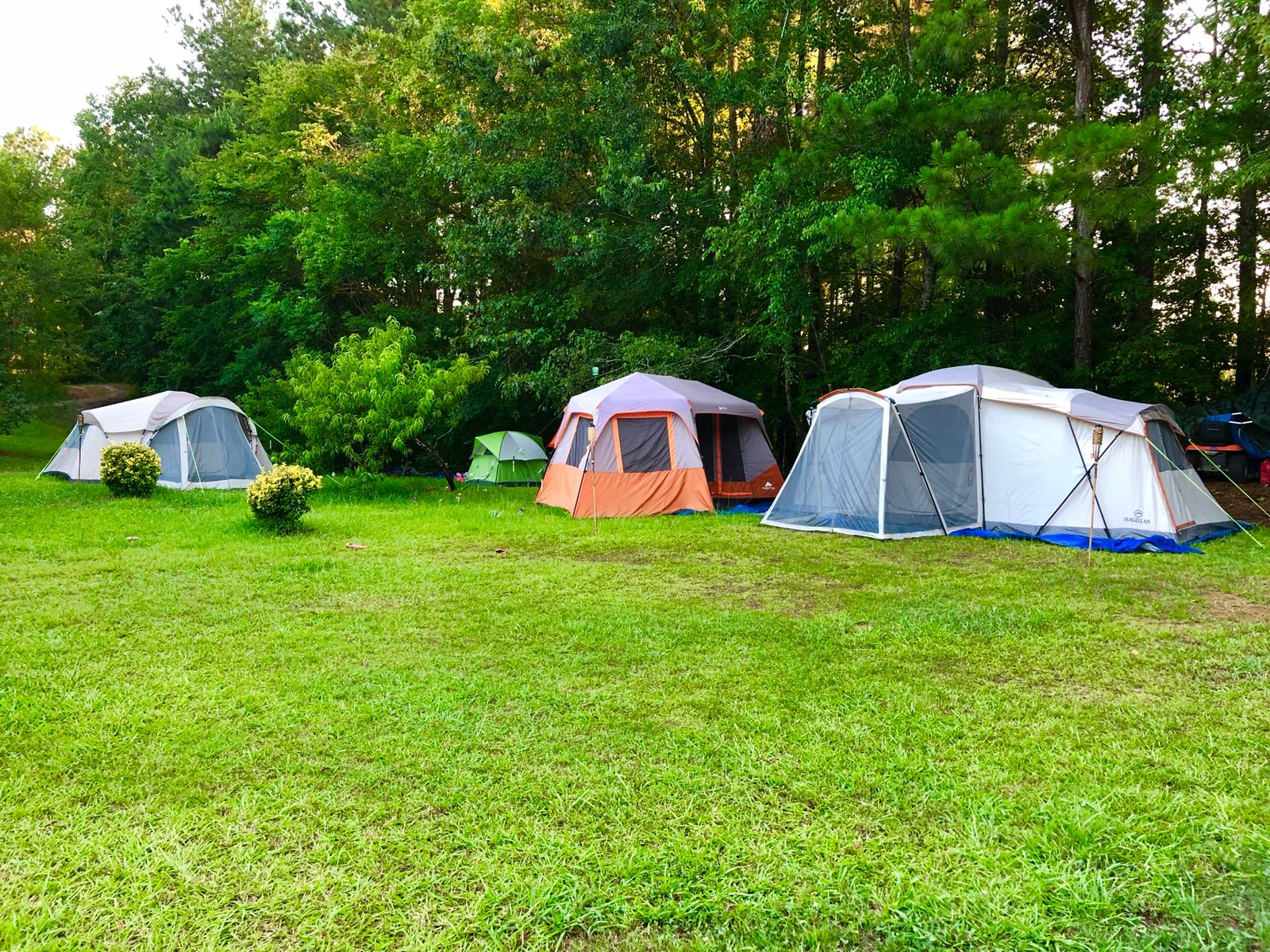 Campsite #1 at Healing Exchange AL