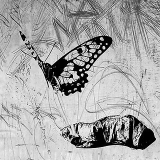 BUTTERFLY WHITE This is part of a triptych, using  a stencil of a butterfly and a stencil of a homeless person in a sleeping bag. The homeless person looking like a chrysalis, the butterfly a metaphor of hope