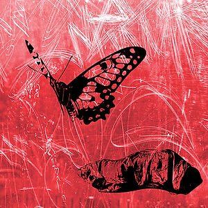 BUTTERFLY RED This is part of a triptych, using  a stencil of a butterfly and a stencil of a homeless person in a sleeping bag. The homeless person looking like a chrysalis, the butterfly a metaphor of hope