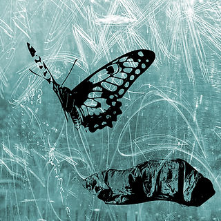 BUTTERFLY BLUE This is part of a triptych, using  a stencil of a butterfly and a stencil of a homeless person in a sleeping bag. The homeless person looking like a chrysalis, the butterfly a metaphor of hope