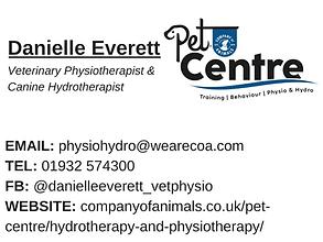 Daniella Everett.png