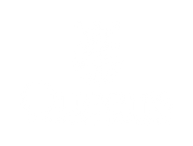 QueensLogo_white.png