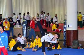 Daniel Vanegas-Taekwondo.jpg