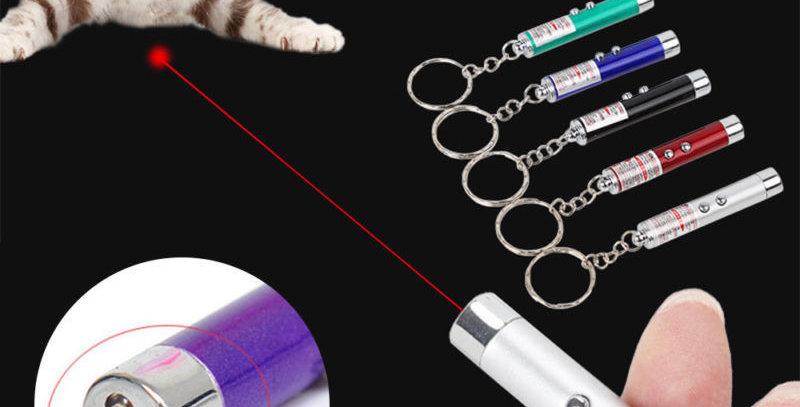 Fun 2-In-1 Laser Pen Pointer Keychain Keyring Torch Cat Dog Toy