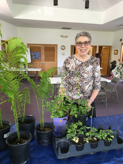 Plant sale for outreach