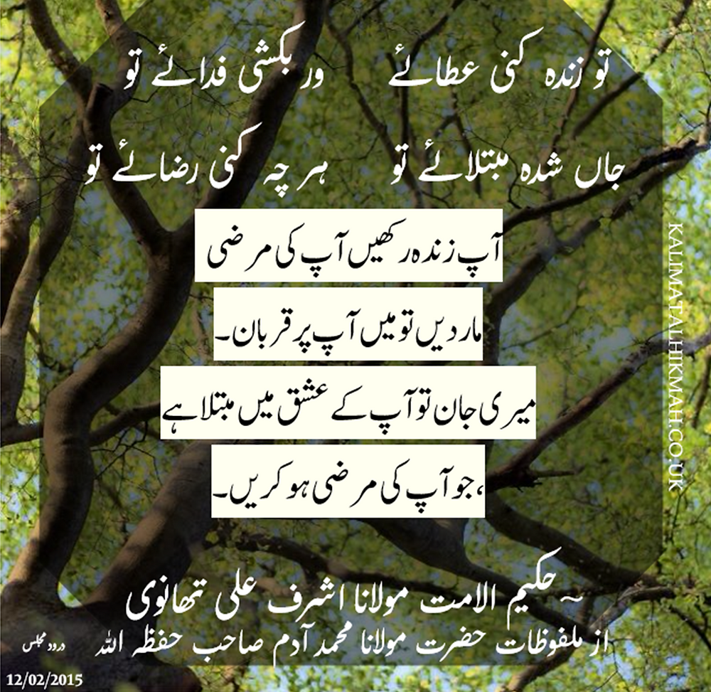 URDU QUOTE.png