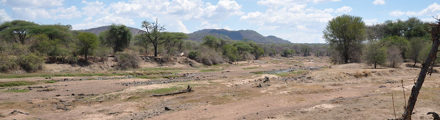 Great Ruaha River Dry