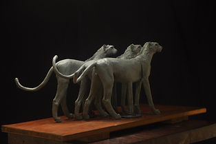 cheetah model in clay Jan 2019  Three br