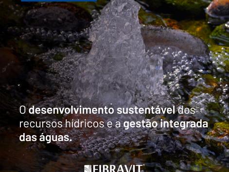 O desenvolvimento sustentável dos recursos hídricos e a gestão integrada das águas.