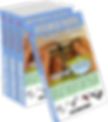 multibooks7 transp1.png