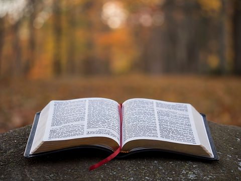 open bible on the ground