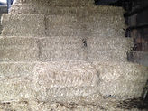 Single Square Bale Hay