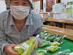 野菜いろいろ売ってます