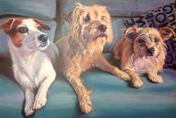 Bobby, Jazzy and Dottie