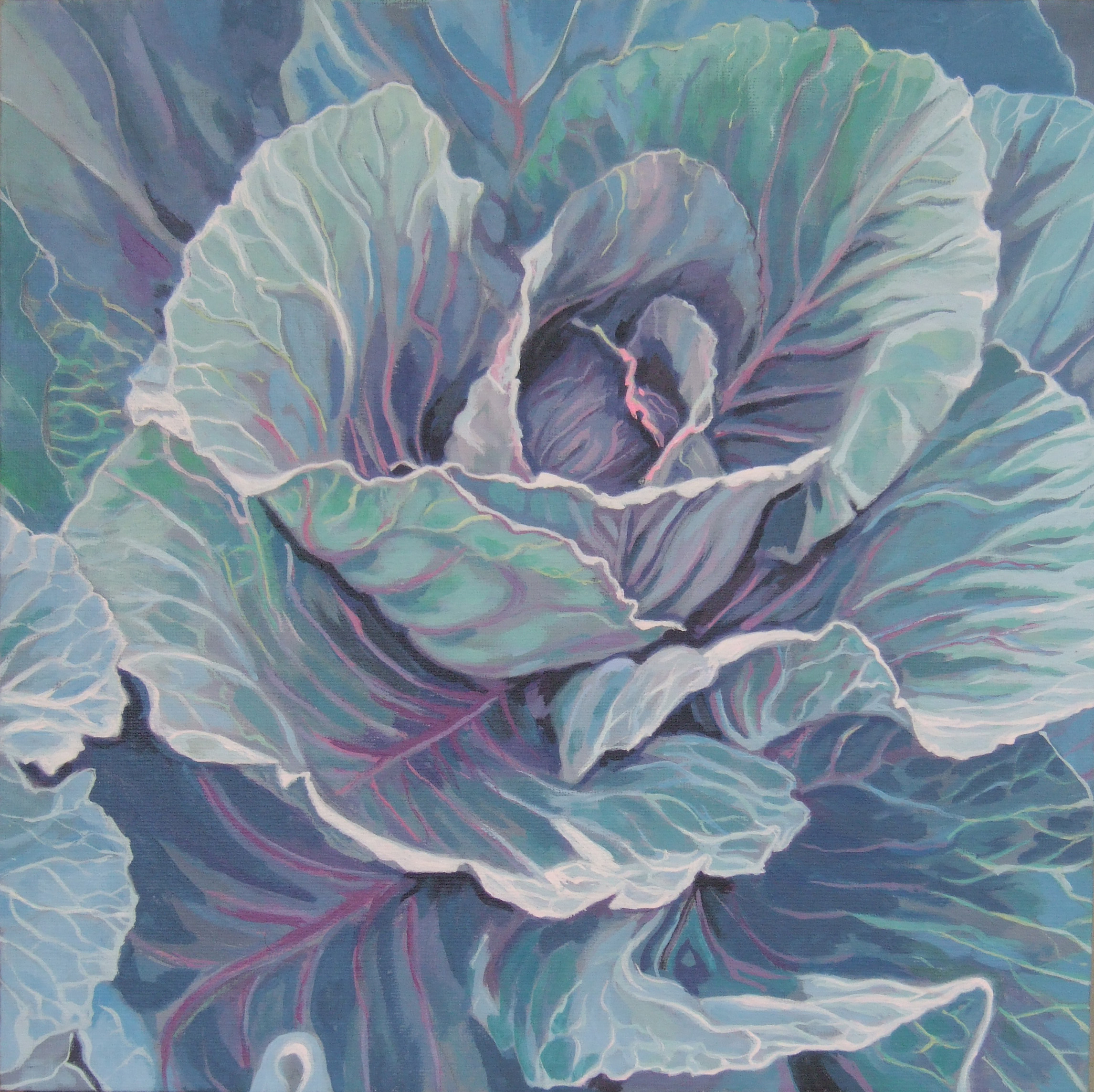 Cabbage 2