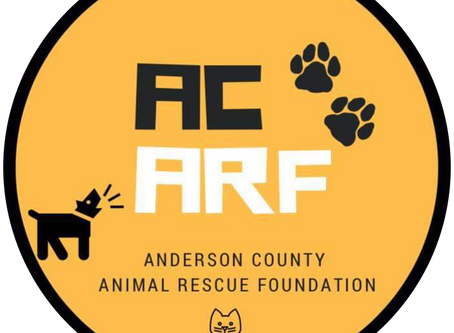 Welcome to the AC ARF website blog