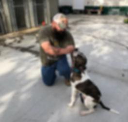 veteran training a dog