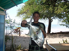 Richard lyons big fish speared while  spearfishing in costa rica papano