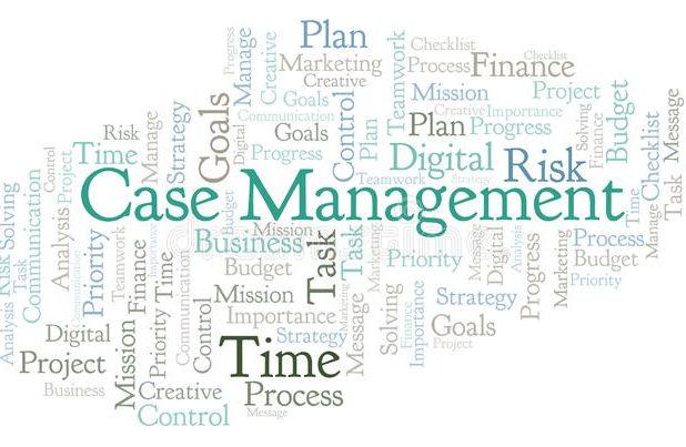 Case Management clip art.jpg