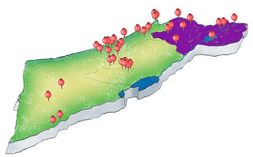 map-with-dots-small.png