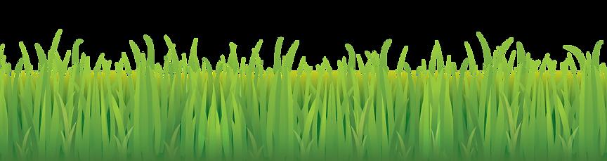 Detail-Grass.png