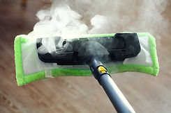 Pest Control - steam cleaning is effecti