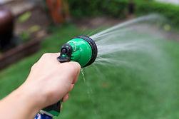 Flea Control - hose so the ground is soa