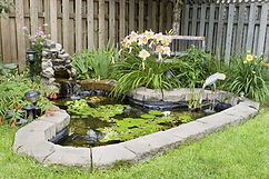 Pest Control Treatment cover fish pond.j