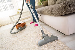 Flea Control - vacuum all floor surfaces