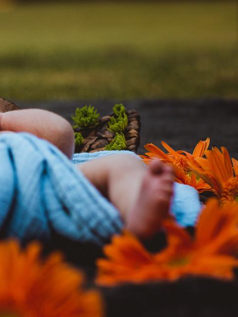 BABY PICS-1-12.jpg