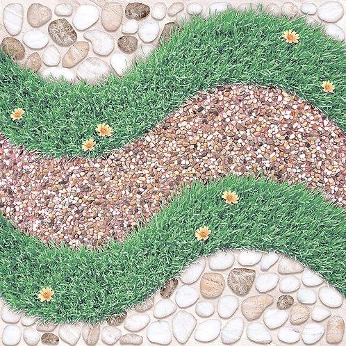 หญ้าสายรุ้ง (หน้าหยาบ)