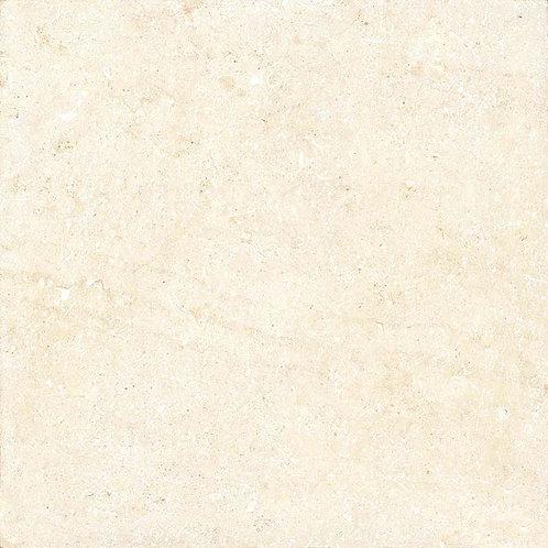 นาโนเนื้อ (หน้ามัน)
