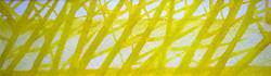 Through the Trees (yellow)