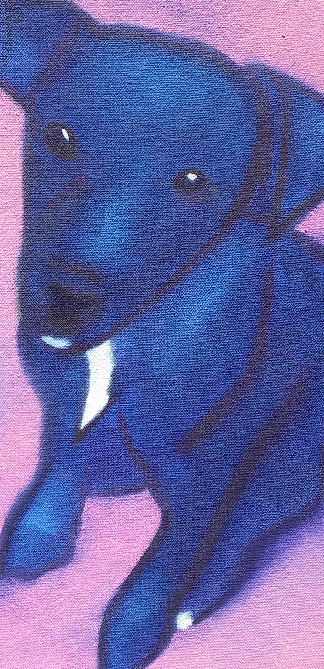 Puppy Whispa 2016
