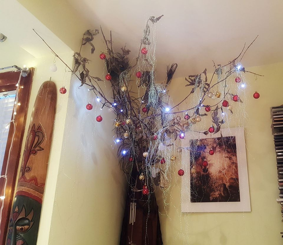 Christmas twig display