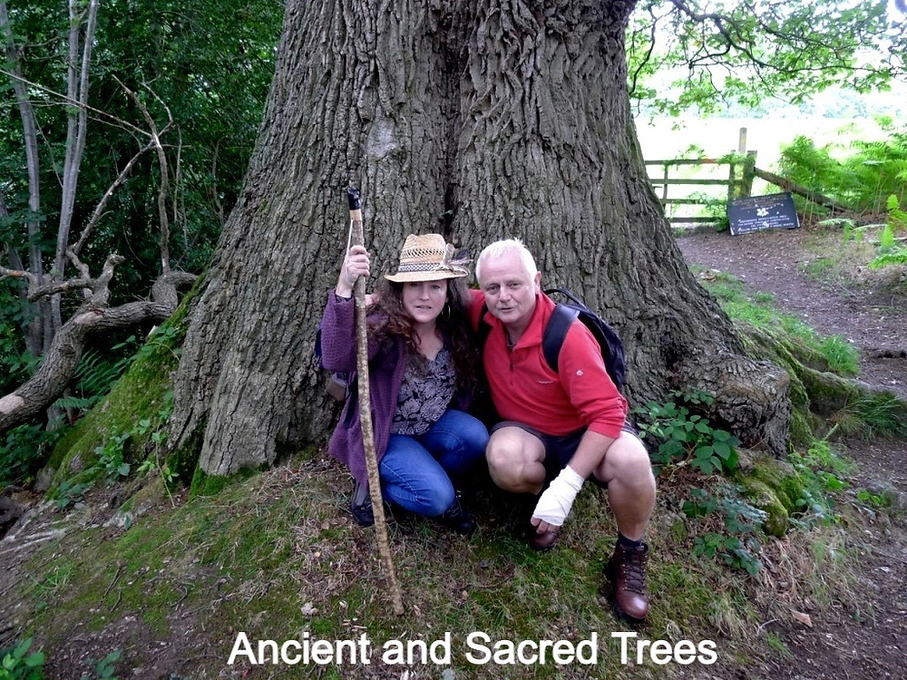 Amanda Claire Vesty and Rob McBride with an ancient oak