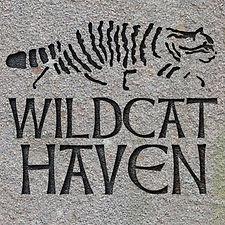 wildcat+haven+logo.jpg