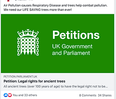 Ancient Tree Petition