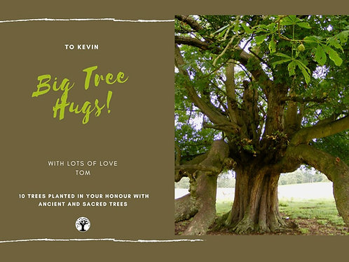 Big Green Tree Hugs Card