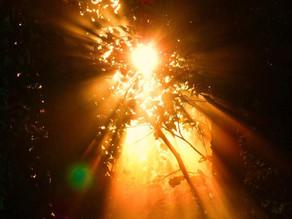 Solstice Blessings & Wonderful News!