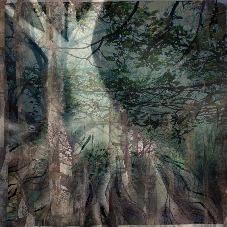 forest print by sarah jameson