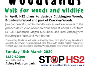 HS2 Cubbington Camp Report by Dr Will Jackson